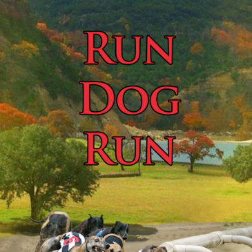 Run Dog Run: the new Kate Caraway Mystery Series—The World of Greyhound Racing